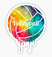 Volleyball Ball Colorful Print Graphic  Sticker