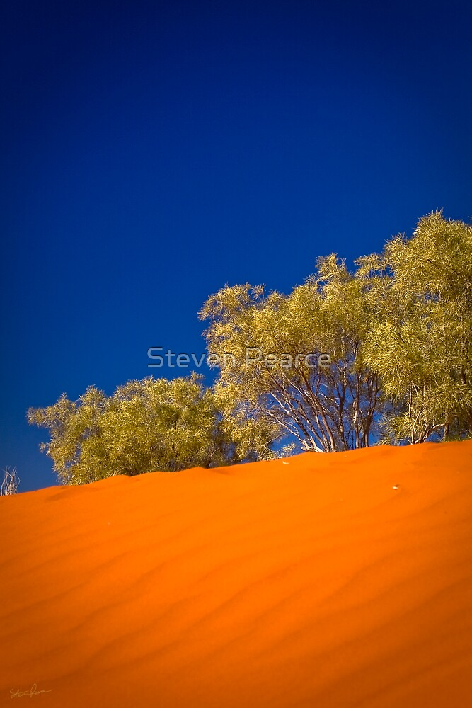 Dunes of the Central Deserts by Steven Pearce