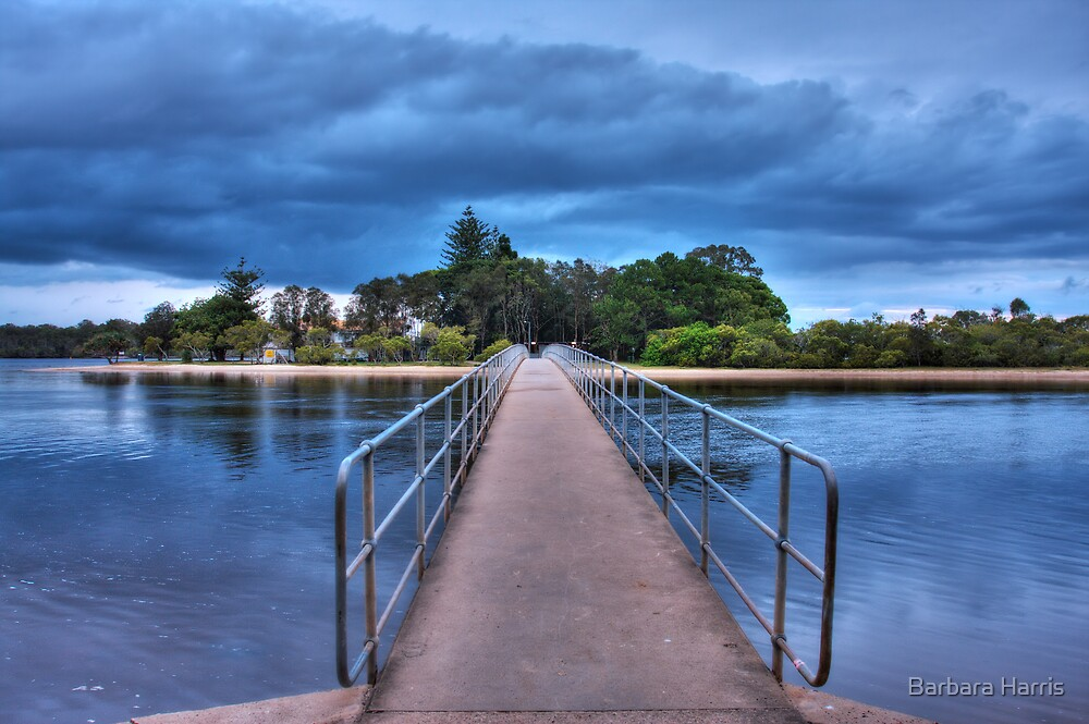 Chambers Island Footbridge-8997-HDR by Barbara Harris