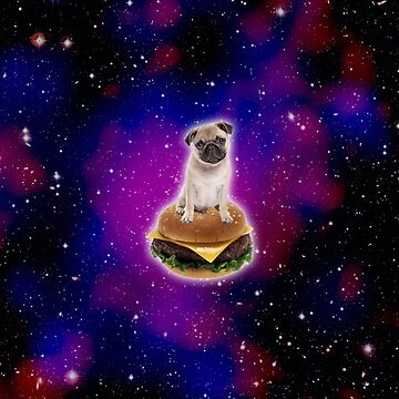Burger Pug...IN SPACE! by PYHC