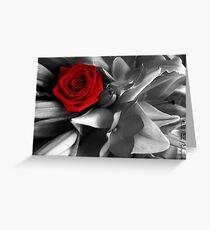 Rose Red Greeting Card