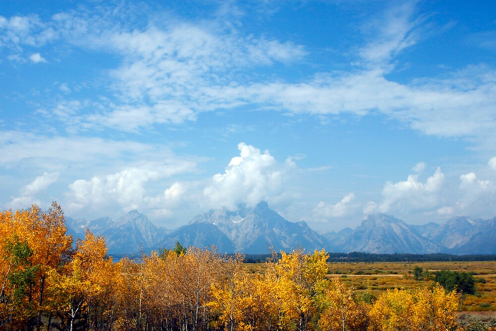 Grand Tetons in Autumn by Virginia Maguire