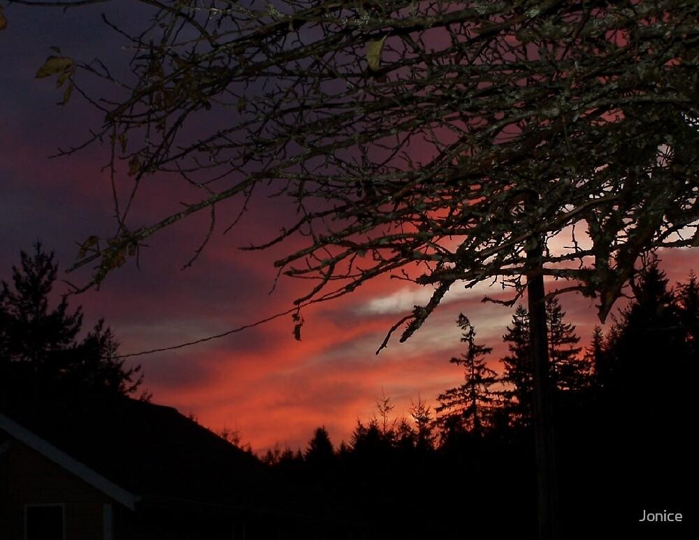 Evening sky Card by Jonice