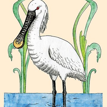 Eurasian Spoonbill by srclark