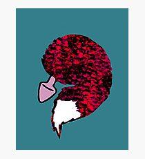 foxtail plug  Photographic Print