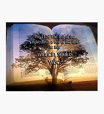 The tree of Life Photographic Print
