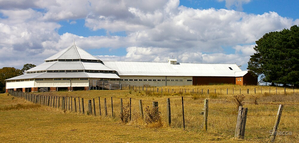 Deargee Woolshed by Smacca