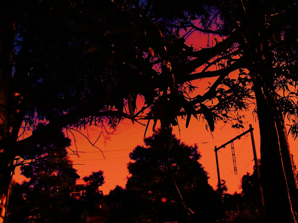 Orange Potion by monica98