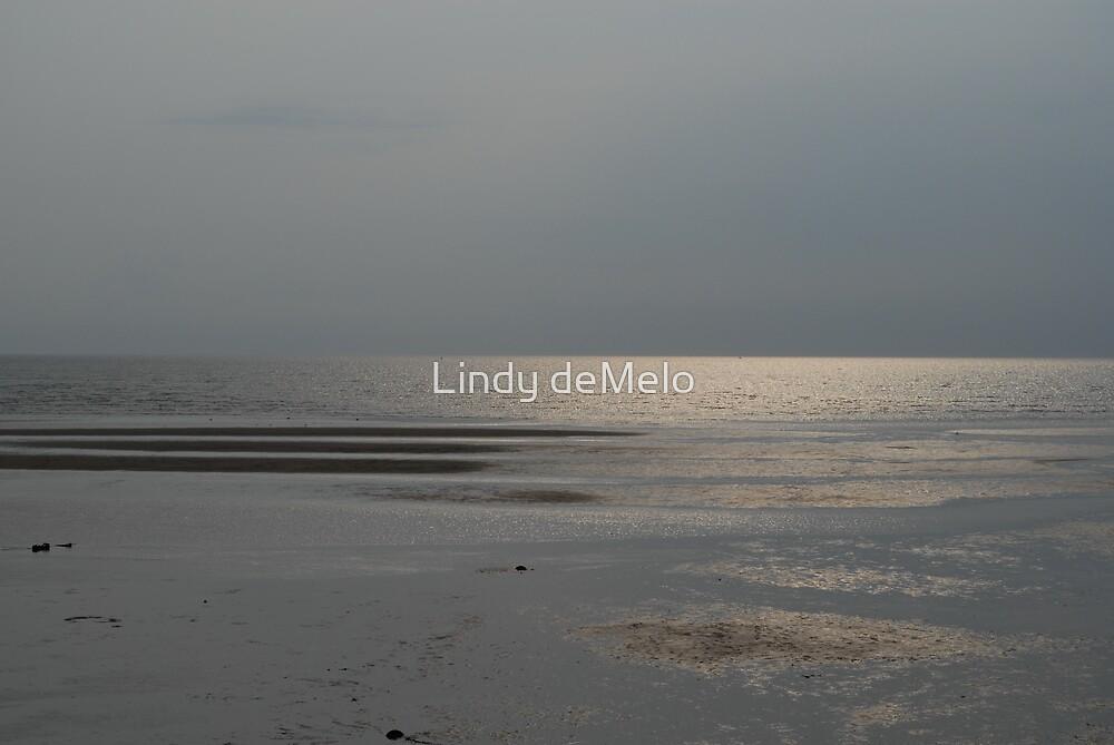 Low tide by Lindy deMelo