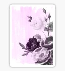 roses and poenies in monochrome on pink background Sticker