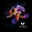 MRE's Flower Dolphin by sourceindie