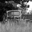Black and White Truck by kneeknee