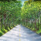 On The Road to Koloa by WhiteDove Studio kj gordon
