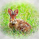 Bunny Rabbit Art by Kerri Farley