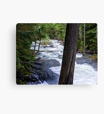 Peaceful Falls in the Trees Canvas Print