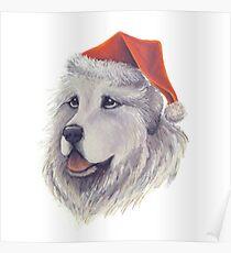 Santa Paws Pyrenees Santa With Hat Poster