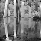 Bayou DeLoutre Reflections by KSkinner