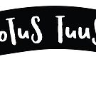 Totus Tuus Banner by CatholicGators