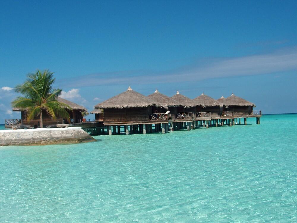 Calm place - Maldives by presbi