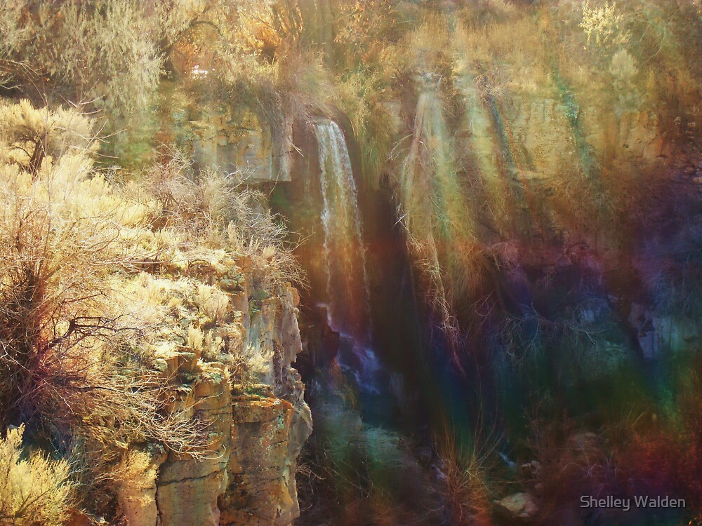 Ethereal by Shelley Walden