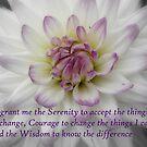 Serenity by Kimberley Davitt