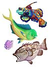 Lots of Fish by Lacey  Ewald