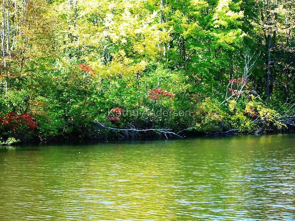 Green Pond Dreams by Kathy Anderson