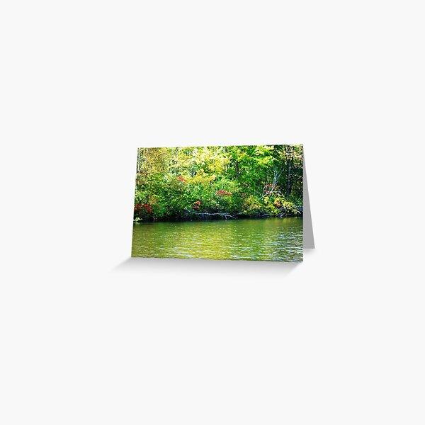 Green Pond Dreams Greeting Card
