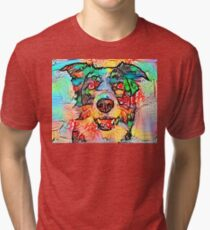 Collie Border Tri-blend T-Shirt