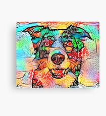 Collie Border Canvas Print