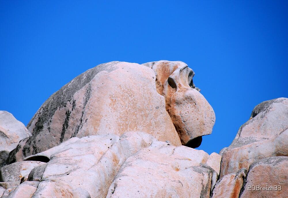 I see an Ape  -  Lavezzi Islands  South Corsica by 29Breizh33
