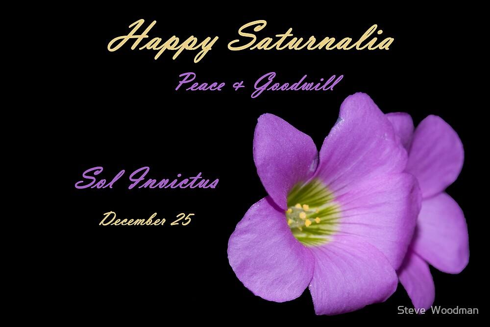Happy Saturnalia by Steve  Woodman
