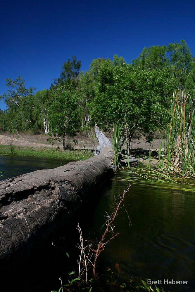 Prosapine River by Brett Habener
