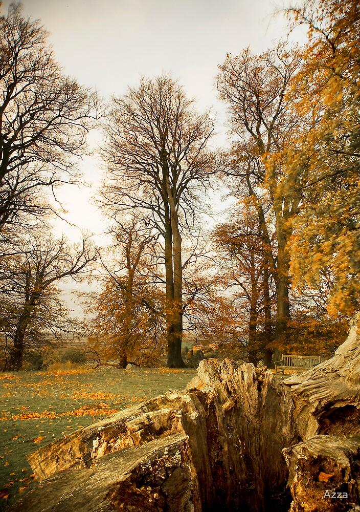 Autumn Trees by Azza