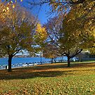 Palmer Park in Fall 6 by marybedy