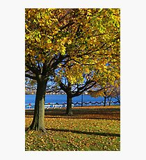 Palmer Park in Fall 8 Photographic Print