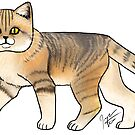 Sand Cat by Jennifer Stolzer