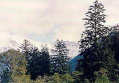 Snowy Ridge by DeaconBlues