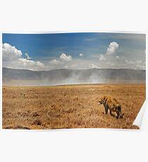 Ngorongoro Crater Poster