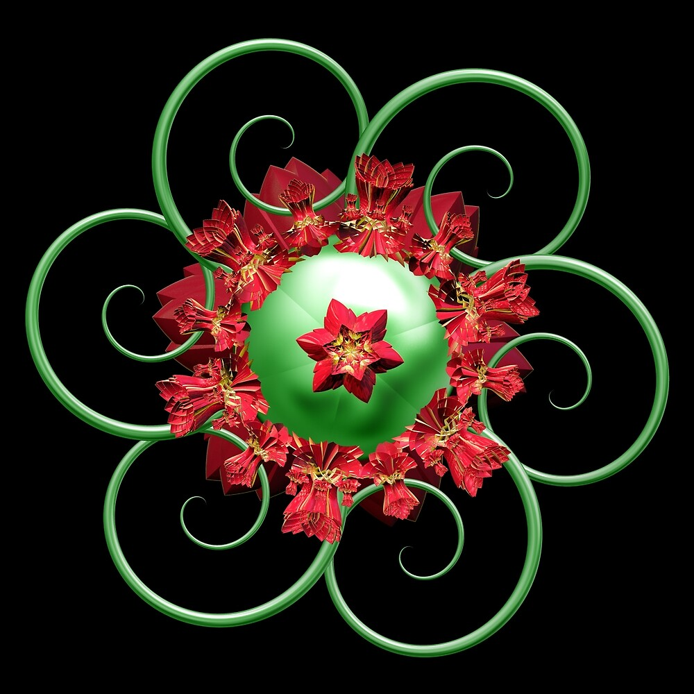 Poinsettia by Pam Blackstone