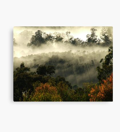 """Morning magic"" Canvas Print"