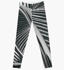 Spiral Steel Leggings