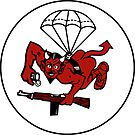 508th Parachute Infantry by jcmeyer