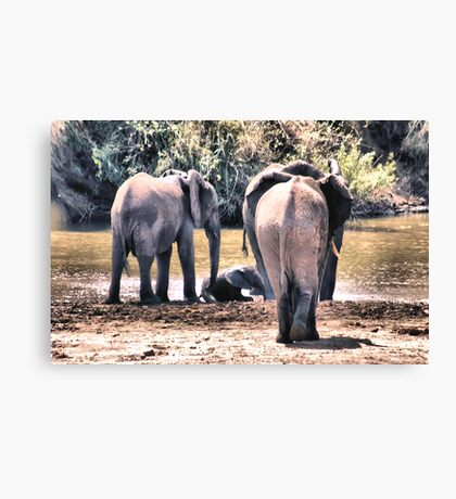 THE CRESH Canvas Print