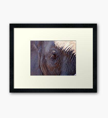 EYESIGHT Framed Print