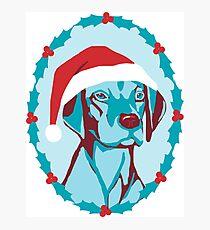 Christmas Dog Photographic Print