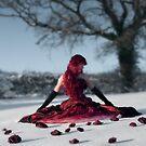 Snow Ball by aka-photography