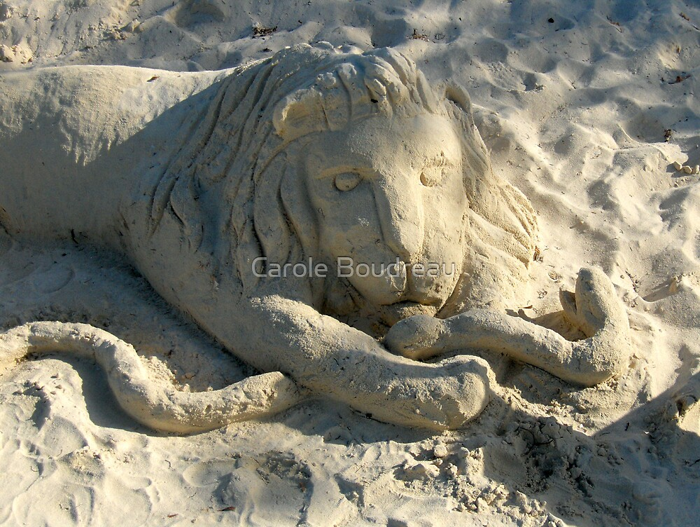 King of the Beach by Carole Boudreau