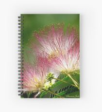 Mimosa ~  An Exotic Flowering Tree Spiral Notebook