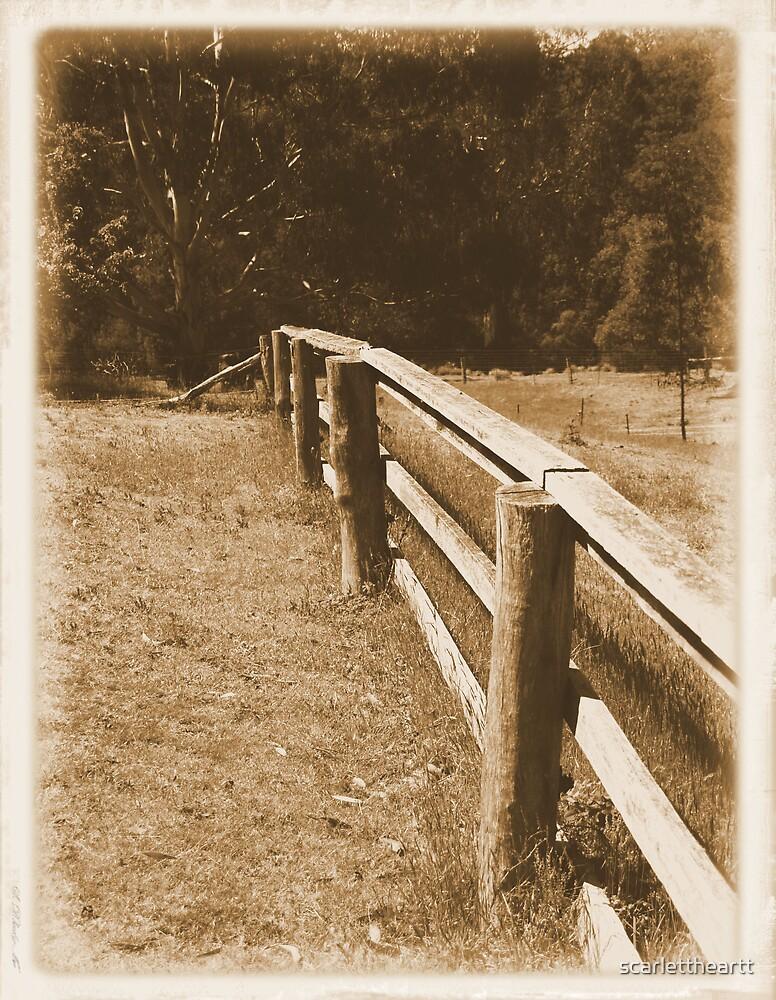 fence by scarlettheartt